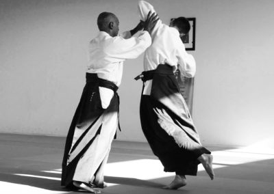 dojo la rosaraie - aikido technique
