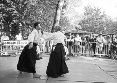 Aikido Exhibition in park, Toulouse. September 2018