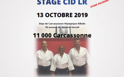 Stage CID Languedoc-Roussillon