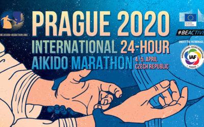 International 24-hour Aikido Marathon